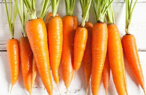Những câu hỏi thường gặp về củ cà rốt mà bạn cần biết