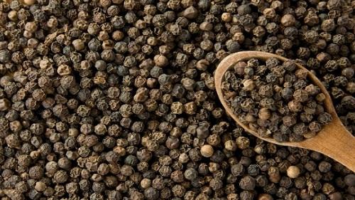 Nông sản Dũng Hà cần thu mua hạt tiêu đen uy tín tại Hà Nội