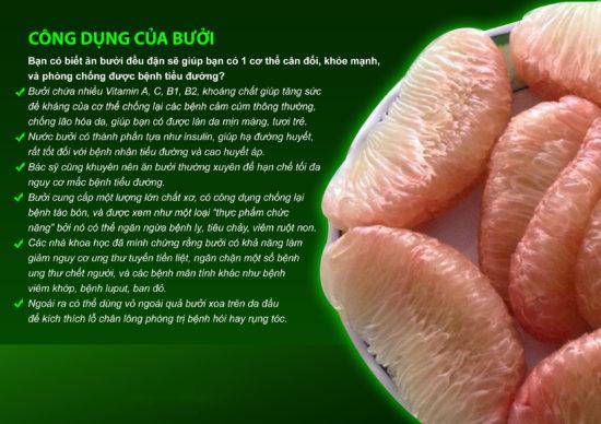 Giá Bưởi da xanh Bến tre là bao nhiêu 1 kg ở Hà Nội