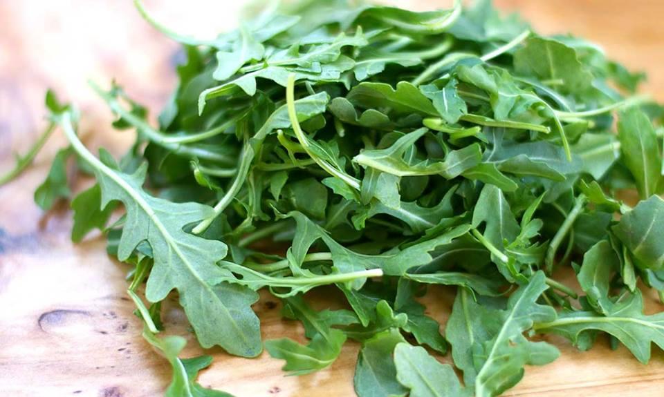 Món ngon từ salad rau rocket