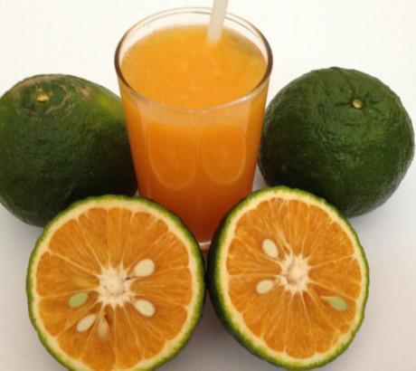1 thang thuốc bổ không bằng một ly nước cam sành
