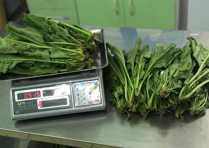 Cung cấp bán cải bó xôi loại 1 Đà Lạt tại Hà Nội