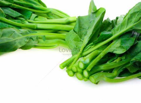 Hướng dẫn cách trị bệnh trĩ bằng rau chân vịt