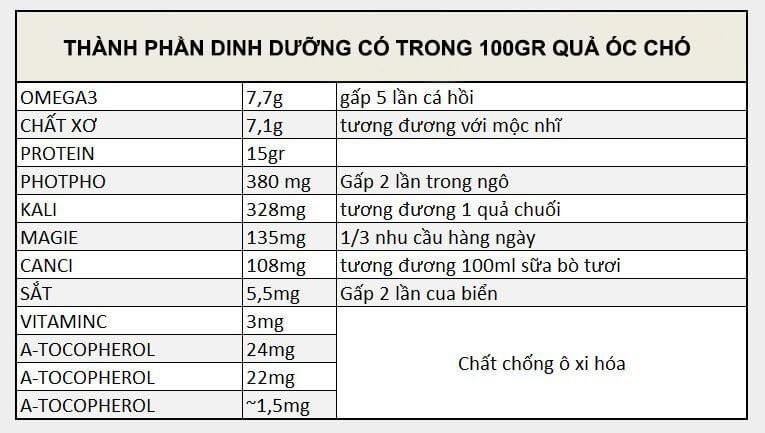dinh-duong-qua-oc-cho