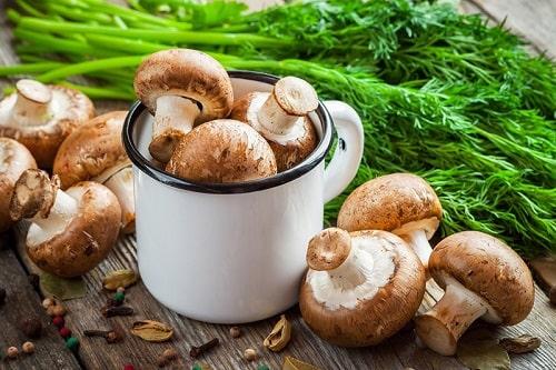 Nấm rơm phổ biến tại Việt Nam